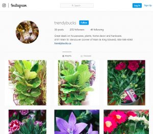 Follow Us On Instagram For The Very Latest Product Listings